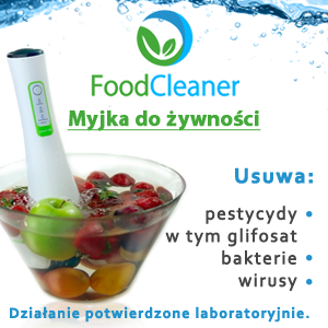 Food Cleaner